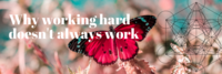 Why working hard doesn't work